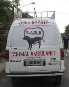 dierenleed - dierenliefde (2)