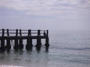 vissers (1)